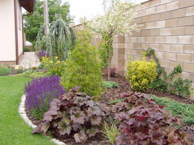 Inšpirácie pre moju (tvoju) záhradu ;) - Obrázok č. 10