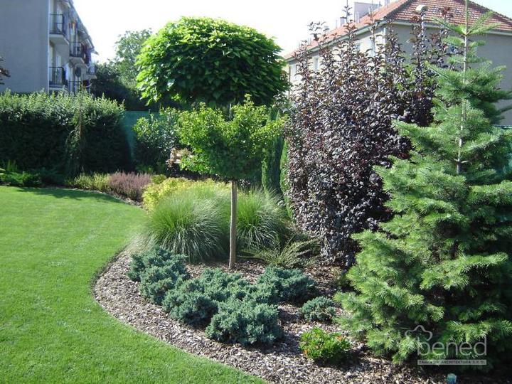 Inšpirácie pre moju (tvoju) záhradu ;) - Obrázok č. 15