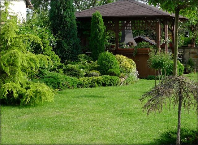 Inšpirácie pre moju (tvoju) záhradu ;) - Obrázok č. 36