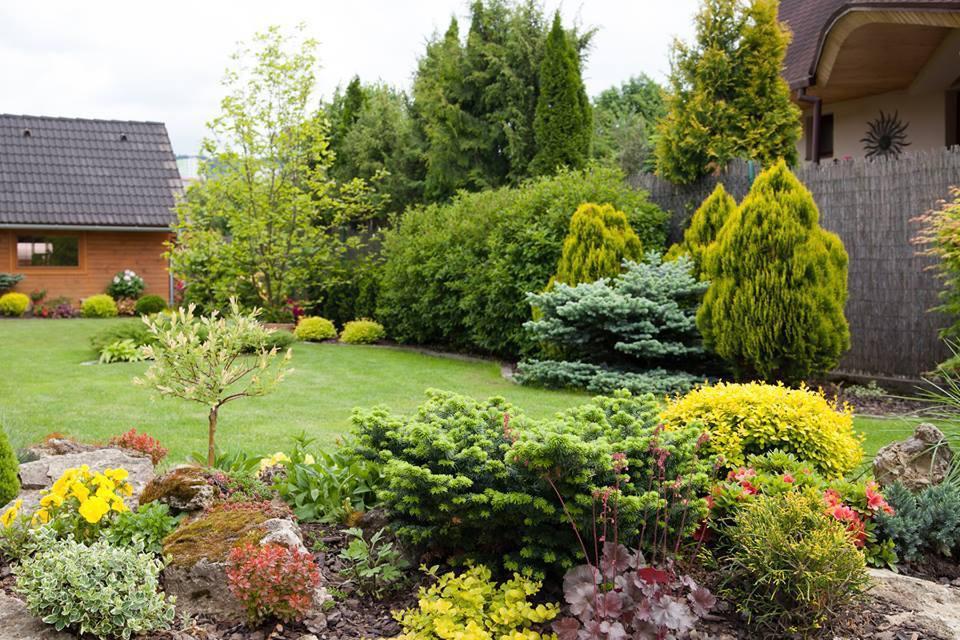 Inšpirácie pre moju (tvoju) záhradu ;) - Obrázok č. 64