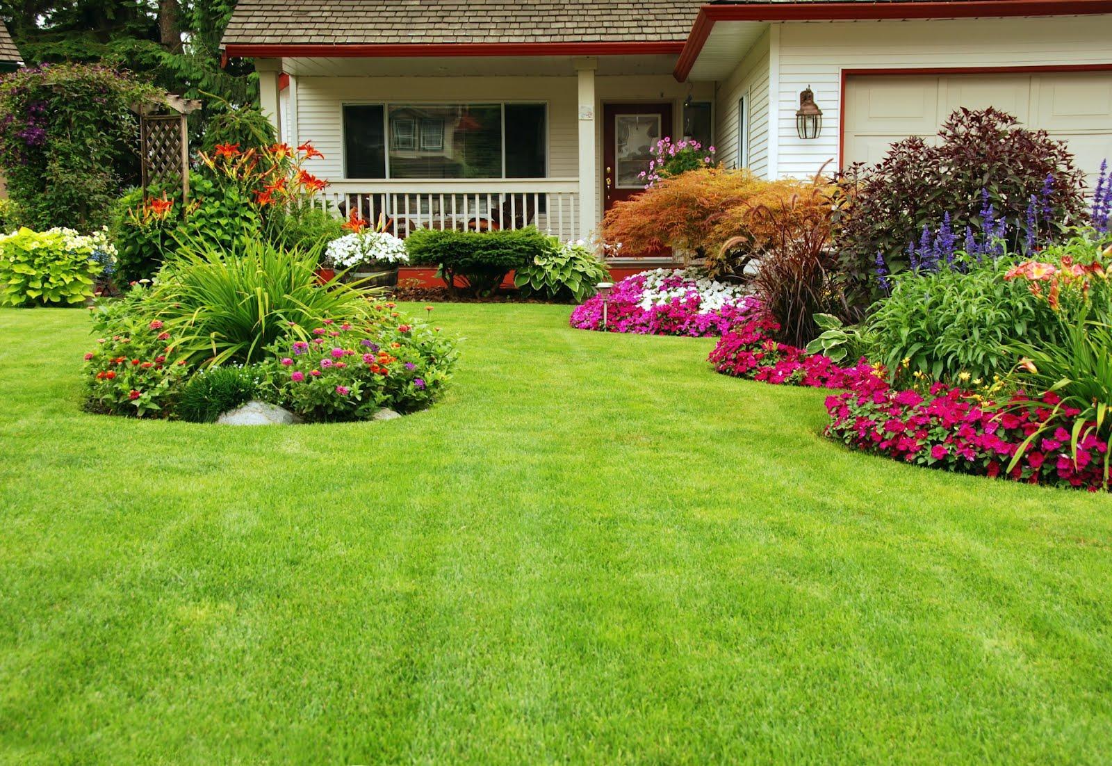 Inšpirácie pre moju (tvoju) záhradu ;) - Obrázok č. 72