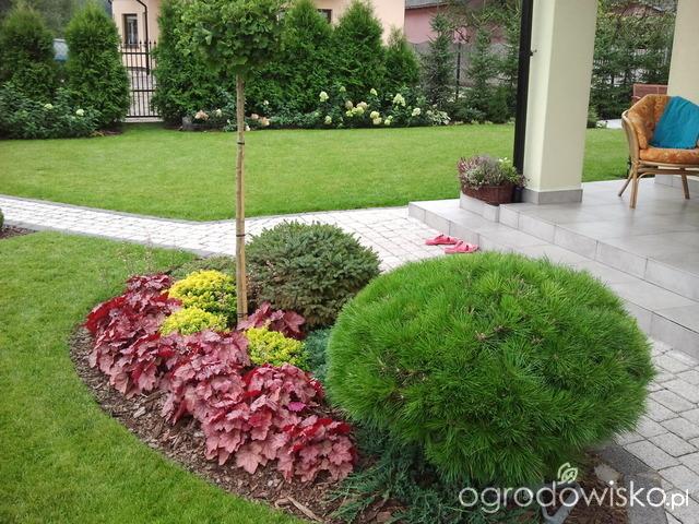 Inšpirácie pre moju (tvoju) záhradu ;) - Obrázok č. 78