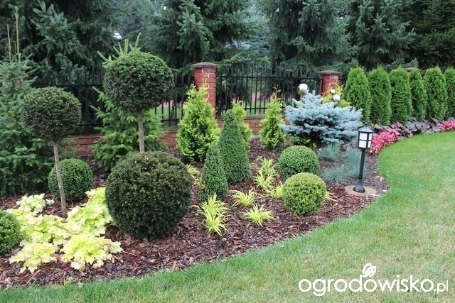 Inšpirácie pre moju (tvoju) záhradu ;) - Obrázok č. 94