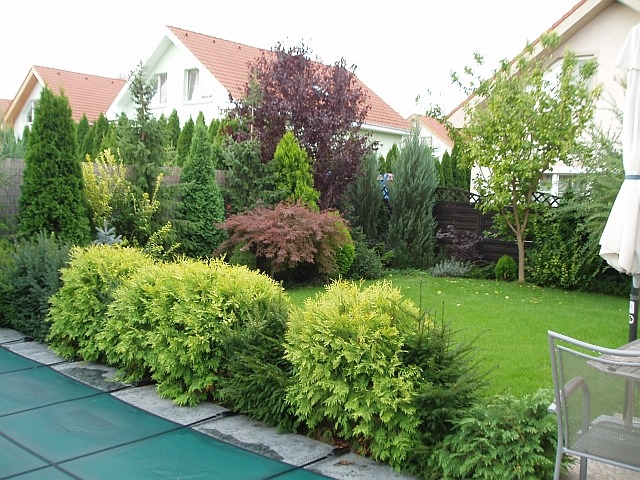 Inšpirácie pre moju (tvoju) záhradu ;) - Obrázok č. 108