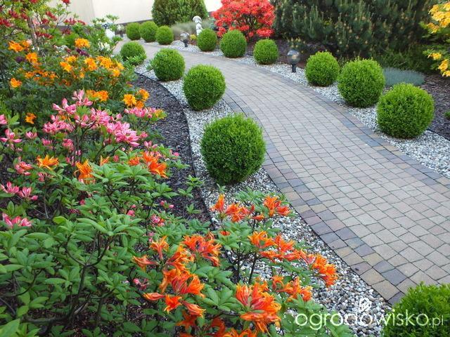 Inšpirácie pre moju (tvoju) záhradu ;) - Obrázok č. 125
