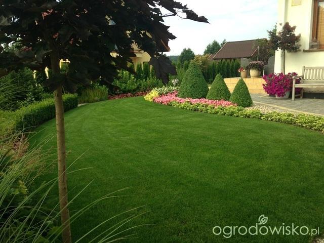 Inšpirácie pre moju (tvoju) záhradu ;) - Obrázok č. 142
