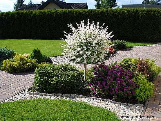 Inšpirácie pre moju (tvoju) záhradu ;) - Obrázok č. 178