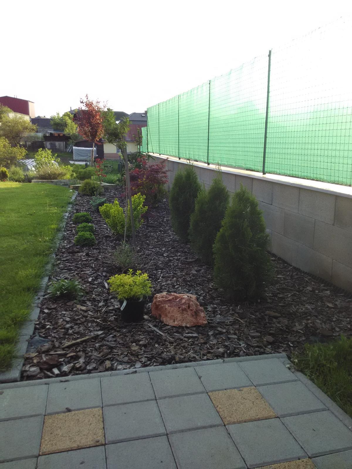 Dvor a zahrada 2015 - zahon vzadu za domom