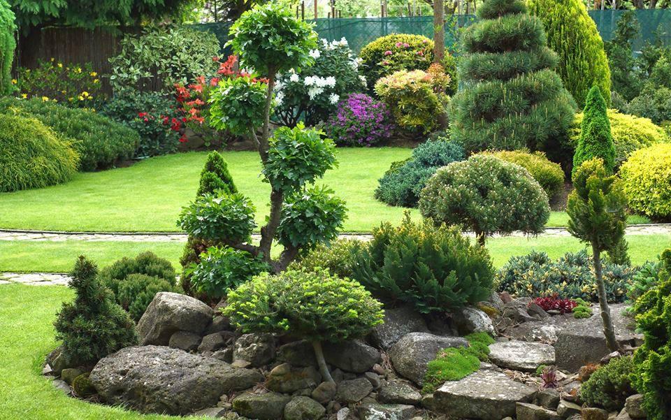 Inšpirácie pre moju (tvoju) záhradu ;) - Obrázok č. 197