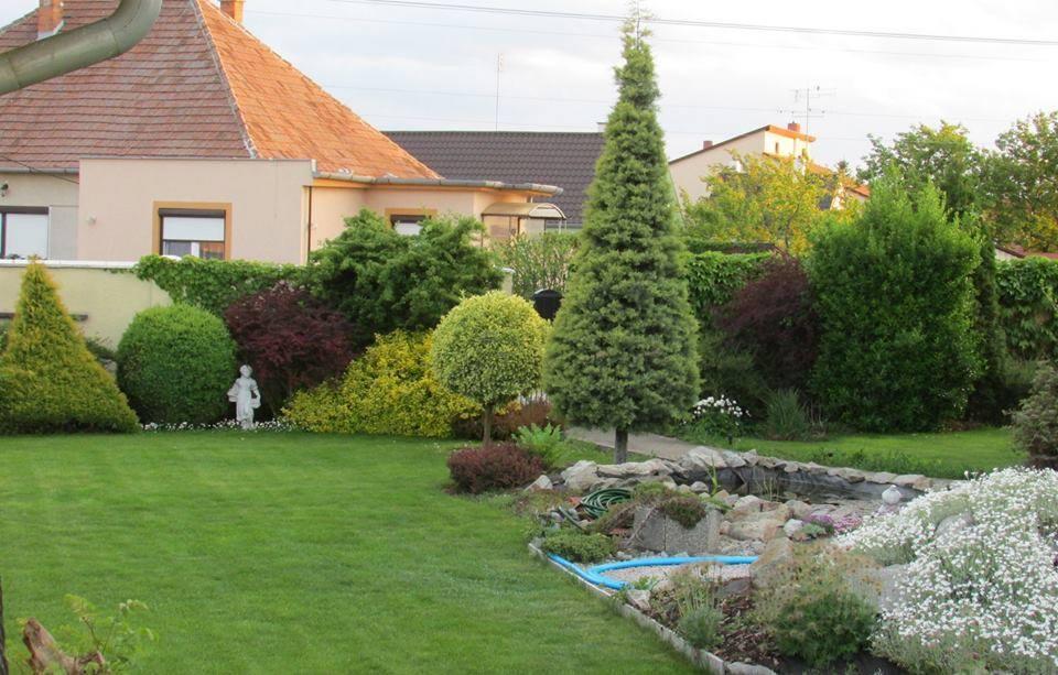 Inšpirácie pre moju (tvoju) záhradu ;) - Obrázok č. 208