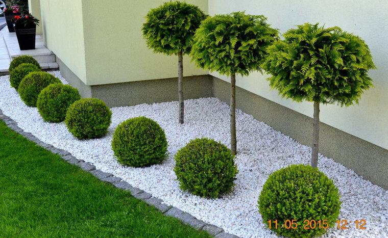 Inšpirácie pre moju (tvoju) záhradu ;) - Obrázok č. 247