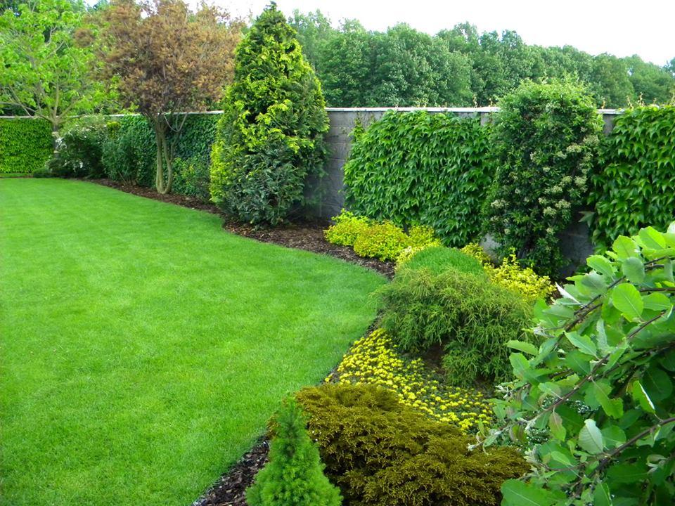 Inšpirácie pre moju (tvoju) záhradu ;) - Obrázok č. 269