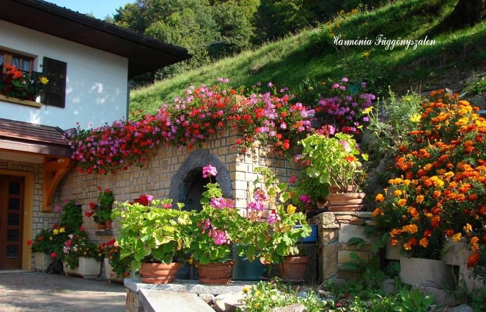 Inšpirácie pre moju (tvoju) záhradu ;) - Obrázok č. 318