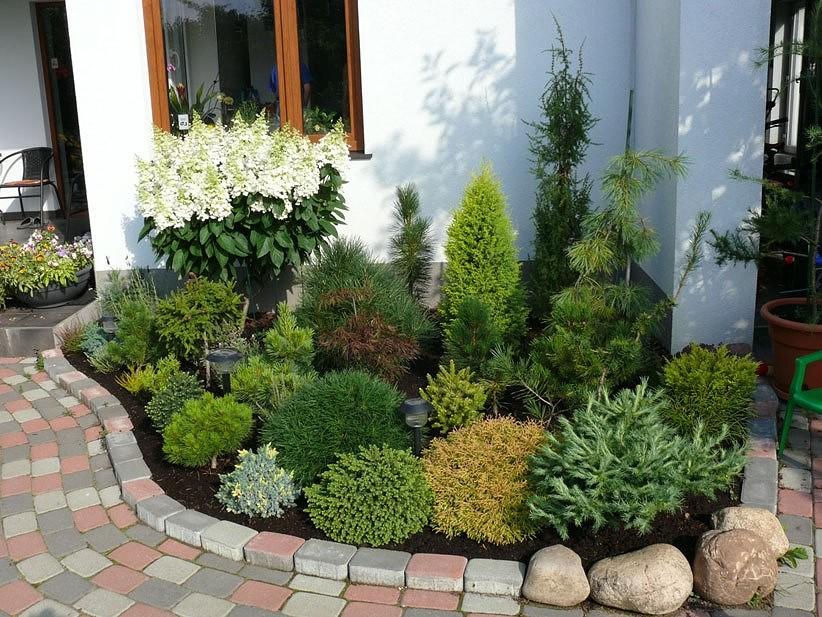 Inšpirácie pre moju (tvoju) záhradu ;) - Obrázok č. 331