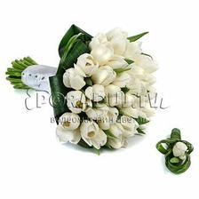 kytica na 100% biele tulipány