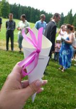 to jsem svatebčanům připravila :)