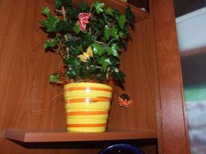 Za týmto kvetom sa ukrýva hliníková rúra od digestora, no povedali by ste to????