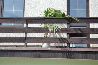 I kytka musela na balkon.
