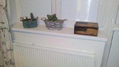A jeden nový plecháček na kaktusy si koupila.