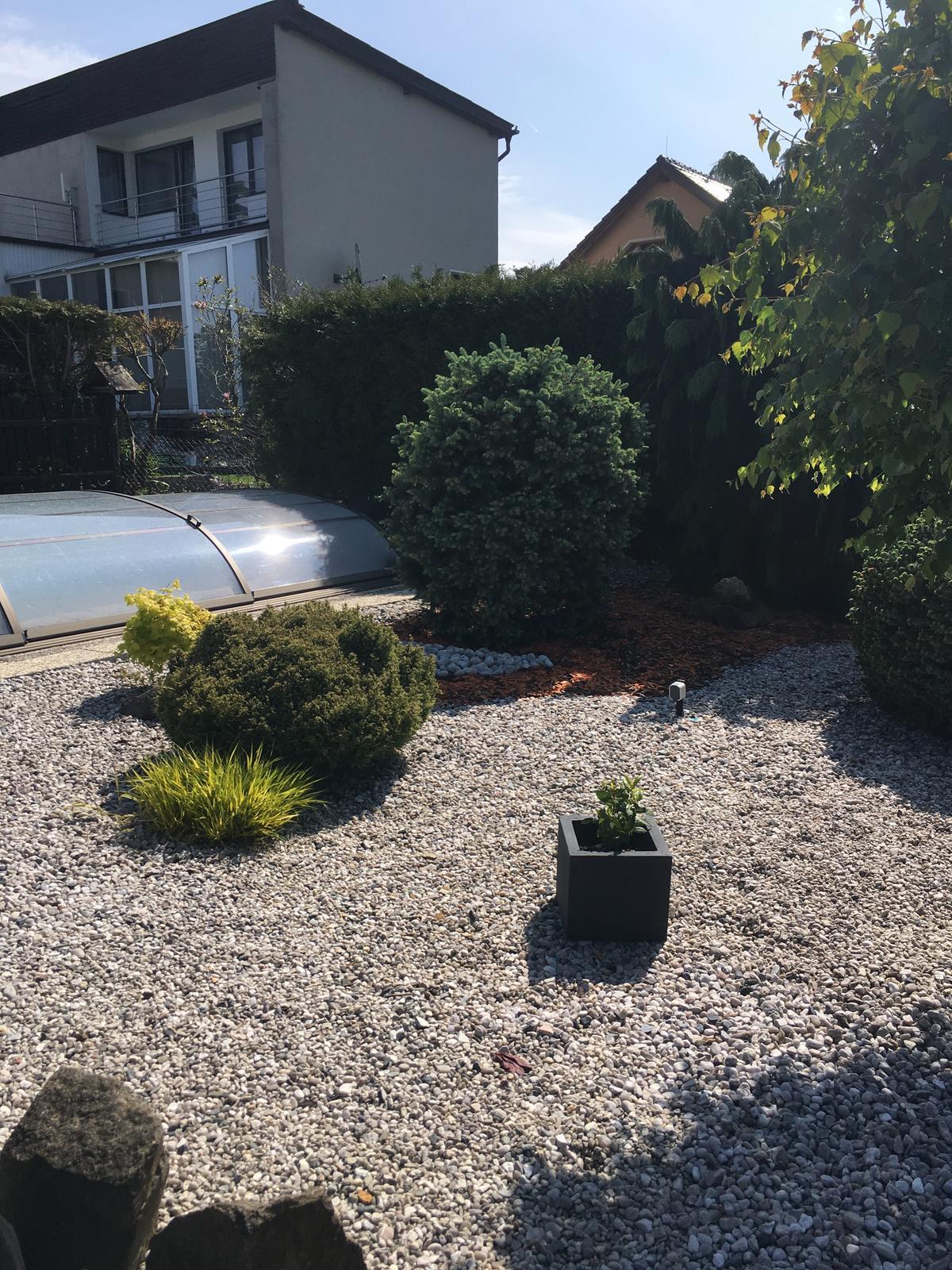 Zahrada 2019 - Obrázek č. 6
