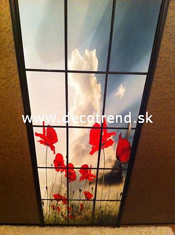 Fototapety na vestavěné skříne, nábytek, dveře - REALIZACE - Fototapeta na dveře na míru