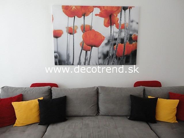 Obrazy na stěnu - v interieru našich zákazníků - Obrazy Vlčí Máky