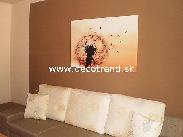 Obrazy na stěnu - v interieru našich zákazníků - Obraz Pampeliška