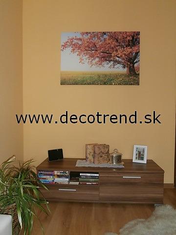 Obrazy na stěnu - v interieru našich zákazníků - Obrazy Přírody - Strom