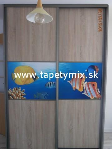 Fototapety na vestavěné skříne, nábytek, dveře - REALIZACE - Obrázek č. 18