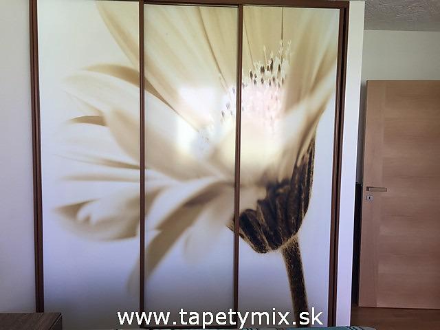 Fototapety na vestavěné skříne, nábytek, dveře - REALIZACE - Samolepíci tapeta na míru Květ
