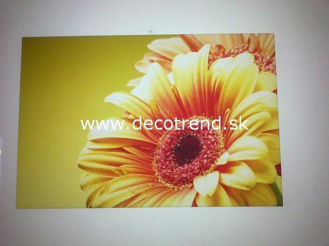 Obrazy na stěnu - v interieru našich zákazníků - Obrázek č. 26