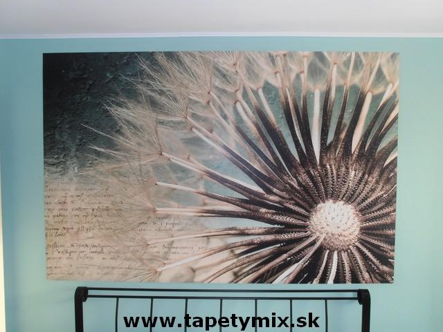 Fototapety - realizace zakázek - Fototapeta Pampeliška v ložnici na zdi