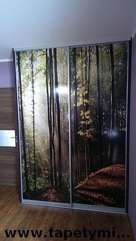 Fototapety na vestavěné skříne, nábytek, dveře - REALIZACE - Obrázek č. 34
