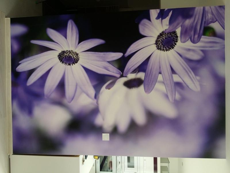 Fototapety do kuchyně - na kuchyňskou linku, na zeď, na skřínky - Obrázek č. 1