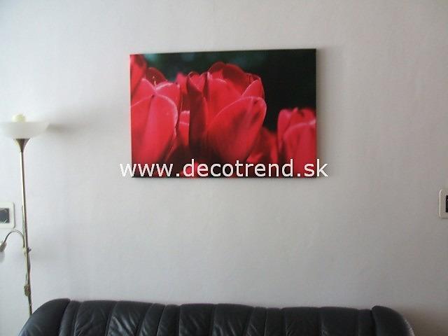 Obrazy na stěnu - v interieru našich zákazníků - Obrázek č. 58