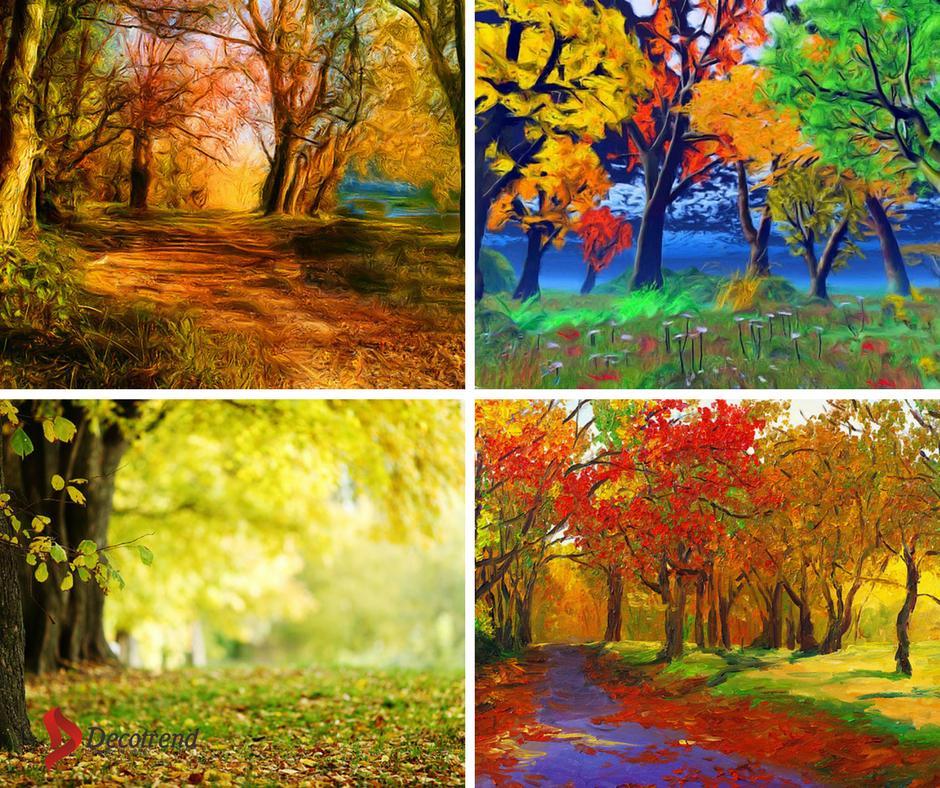 Stromy - fototapety - Obrázek č. 4
