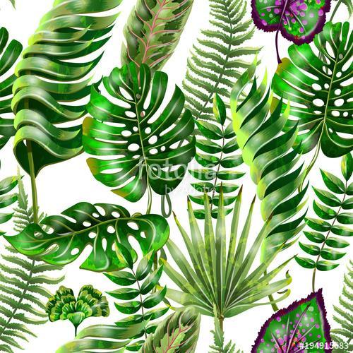 Tapety Tropicana - Obrázek č. 17