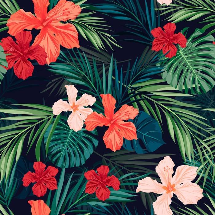 Tapety Tropicana - Obrázek č. 19
