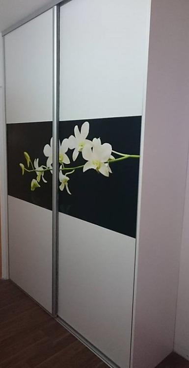 Fototapety na vestavěné skříne, nábytek, dveře - REALIZACE - Obrázek č. 76