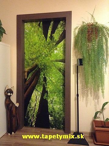 Fototapety na vestavěné skříne, nábytek, dveře - REALIZACE - Obrázek č. 78