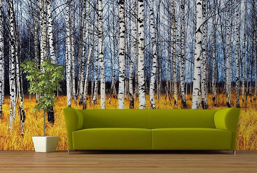Stromy - fototapety - Obrázek č. 25