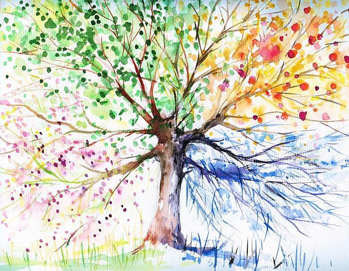 Stromy - fototapety - Obrázek č. 65