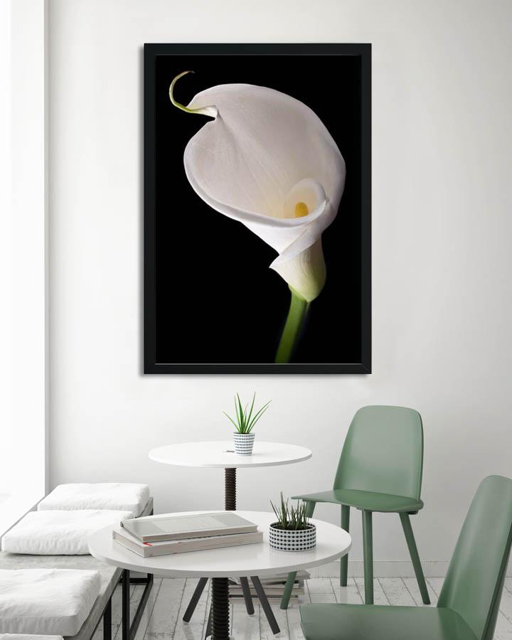Plakáty s květinami 🌸🌼🌺 - Obrázek č. 5