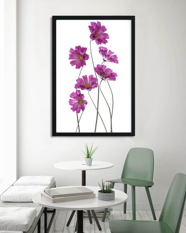 Plakáty s květinami 🌸🌼🌺 - Obrázek č. 10
