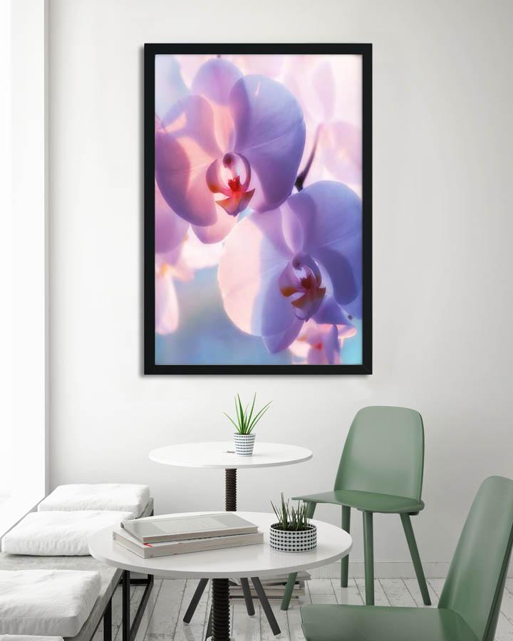 Plakáty s květinami 🌸🌼🌺 - Obrázek č. 17