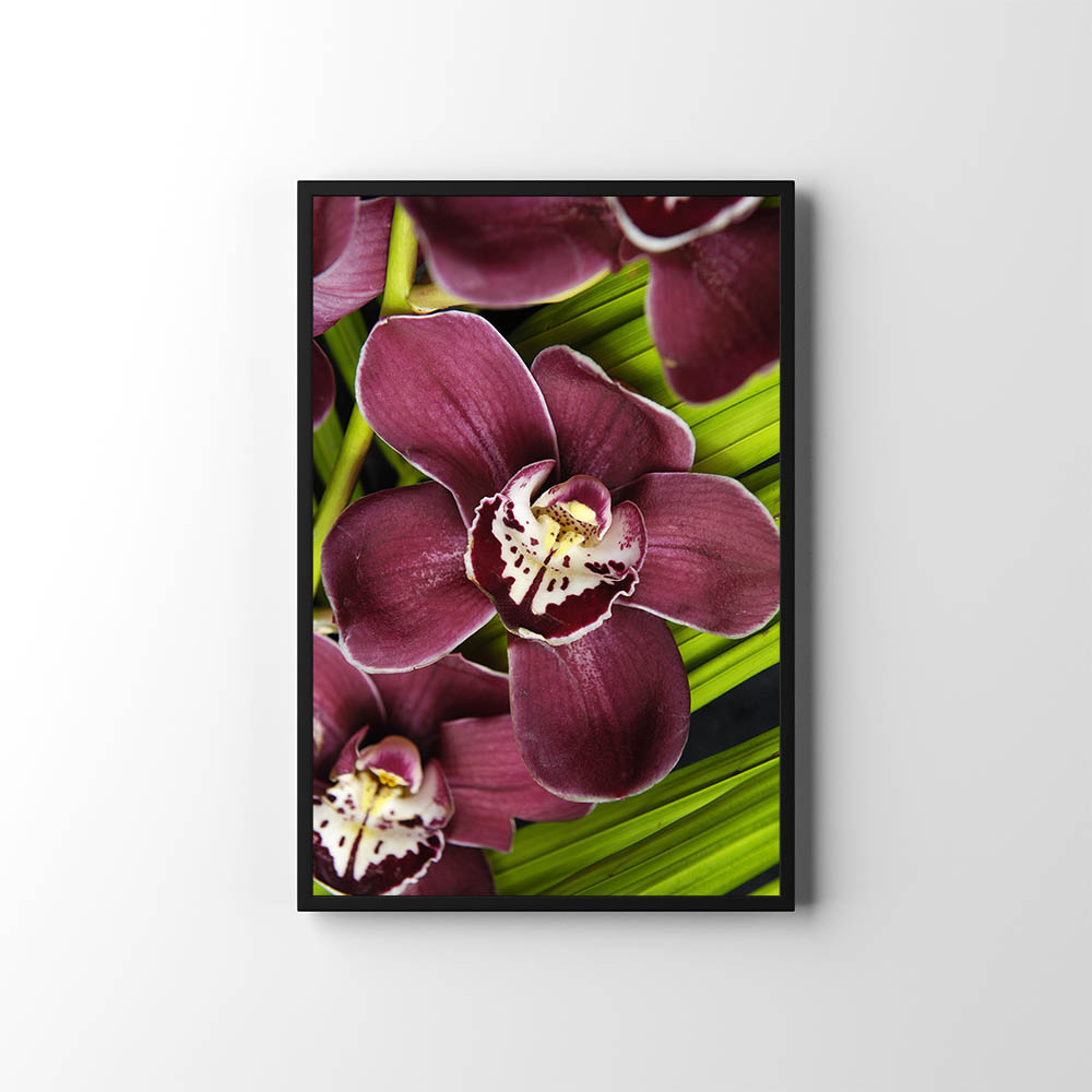 Plakáty s květinami 🌸🌼🌺 - Obrázek č. 27