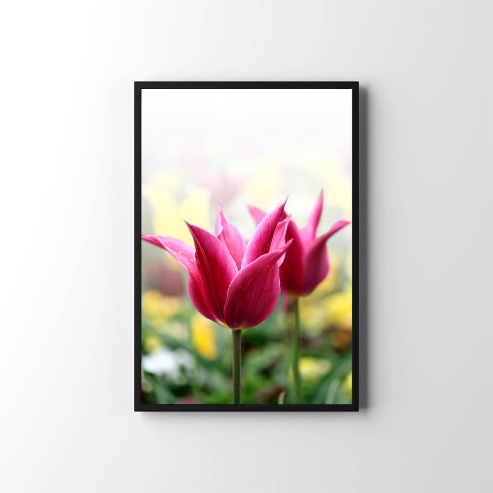 Plakáty s květinami 🌸🌼🌺 - Obrázek č. 30