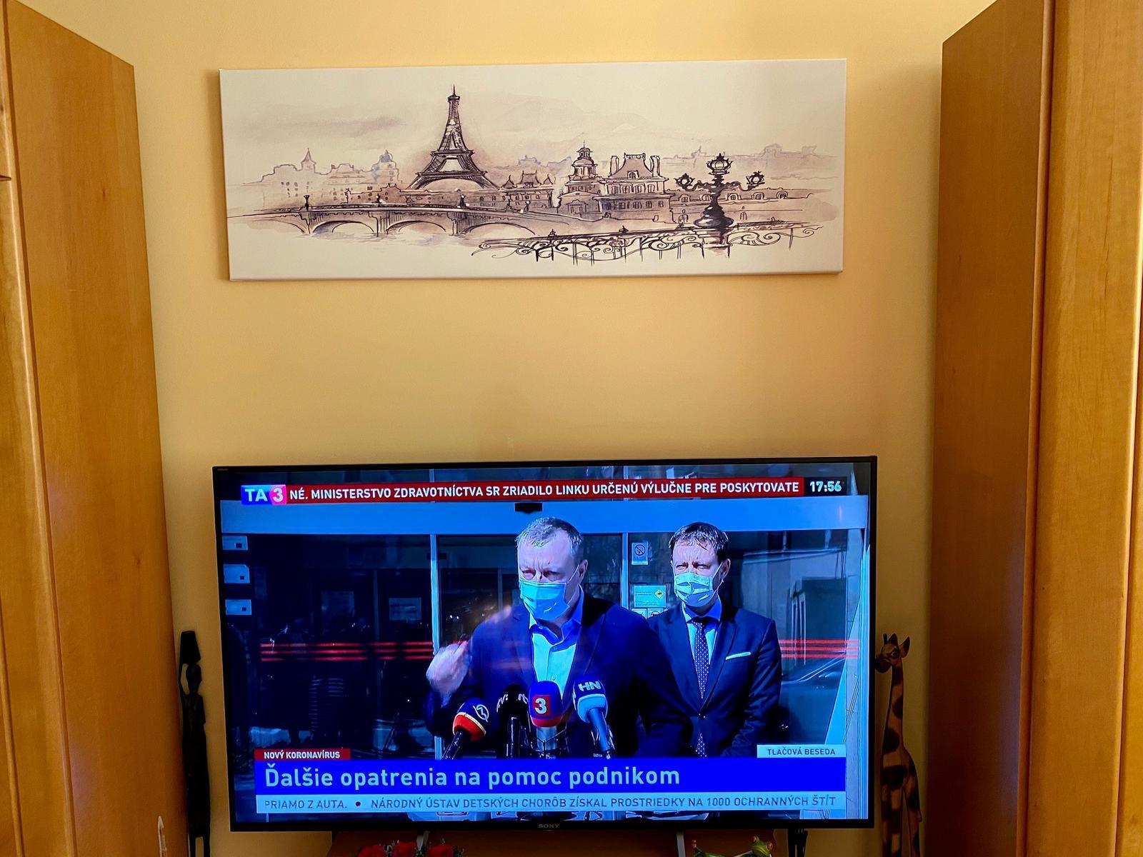 Obrazy na stěnu - v interieru našich zákazníků - Obrázek č. 105