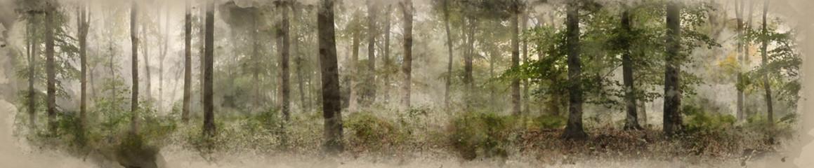 Stromy - fototapety - Obrázek č. 71