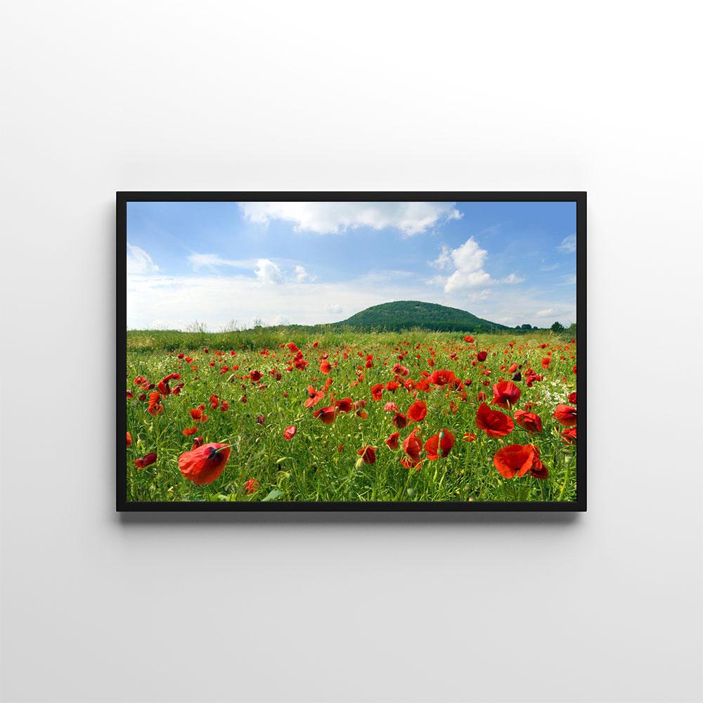 Plakáty s květinami 🌸🌼🌺 - Obrázek č. 34